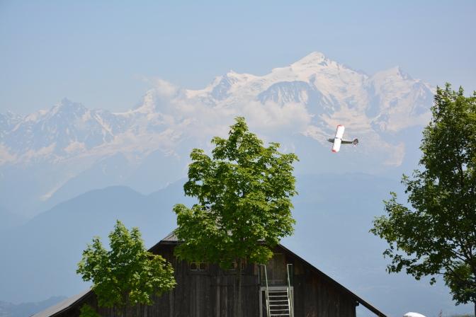 Territoires, curiosités : un été aux multiples senteurs